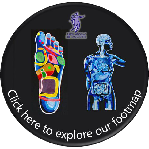 Association of Reflexologists Footmap