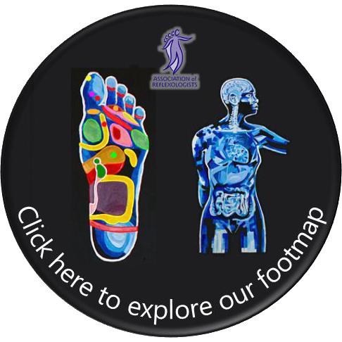 Association of Reflexologists Footmap